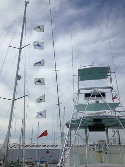 eight release flags