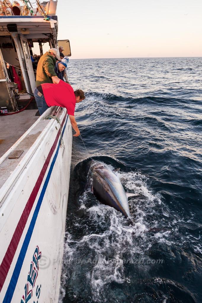Nova Scotia release