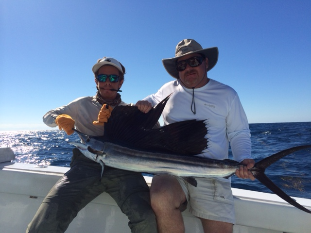 Freddy's Sailfish
