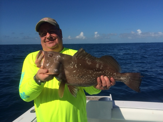 Dec red grouper