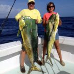 Fishing clients holding 2 big dolphins