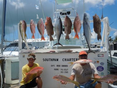 grouper, red, yellowtail, mutton snapper and a kingfish at the dock in key west