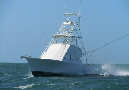 the southpaw going fast getting to the fishing grounds
